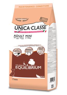 Adult Mini Equilibrium