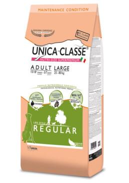 adult large regular