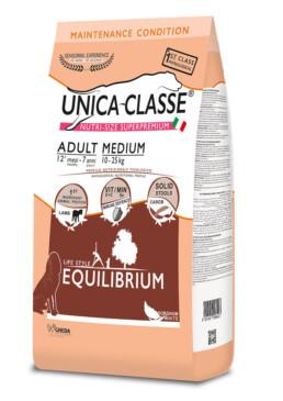 adult medium equilibrium